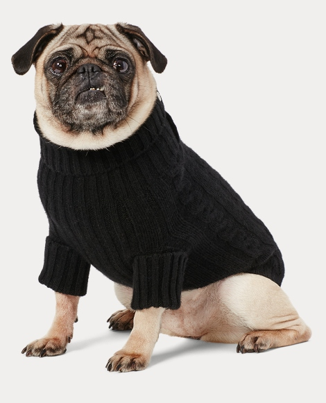 Cable Cashmere Dog Sweater