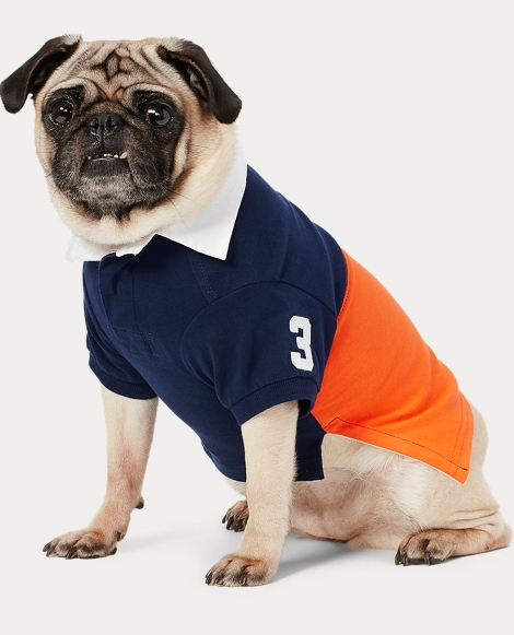 Color-Blocked Cotton Dog Polo
