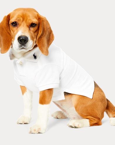 Cotton Mesh Dog Polo