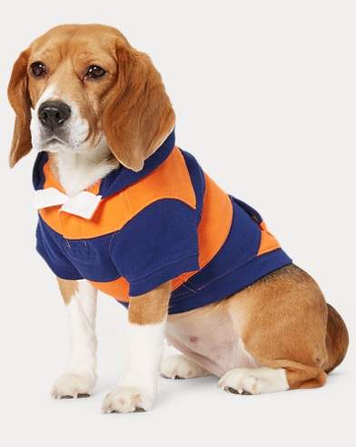 Striped Fleece Dog Hoodie