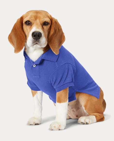 Big Pony Cotton Dog Polo Shirt