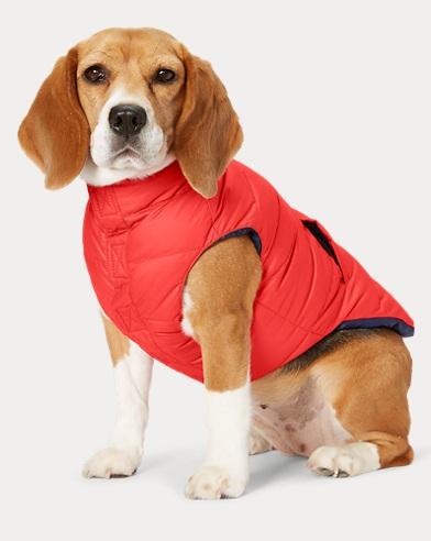 Reversible Dog Down Vest