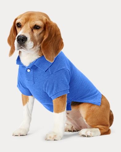 Big Pony Mesh Dog Polo Shirt