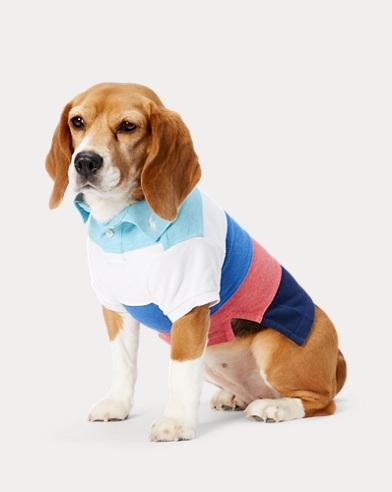 Striped Mesh Dog Polo Shirt